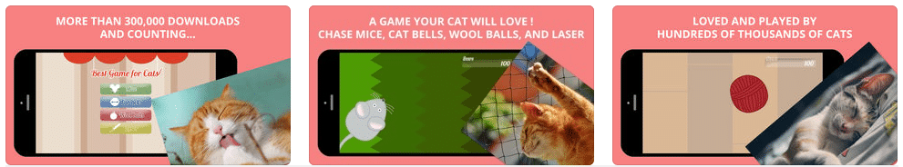 Best Game for Cats